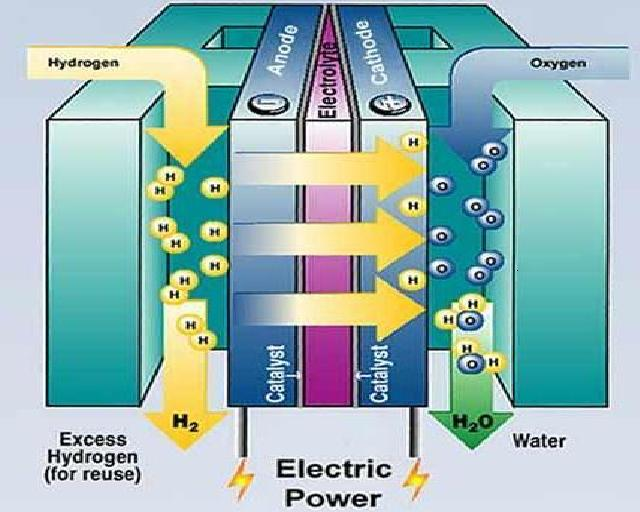 untitled document : fuel cell diagram - findchart.co